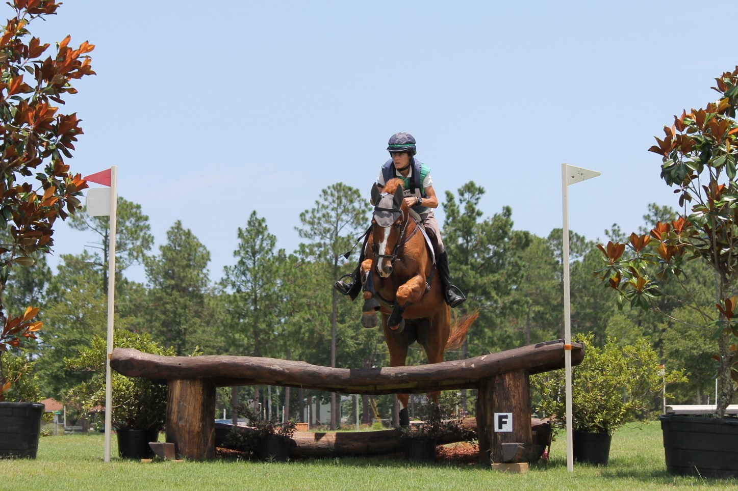 Stable View Eventing Academy